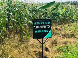 Land for sale Remo North Ogun