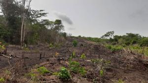 Residential Land Land for sale Back Of Yabatech/odo Iranguishi/epe Epe Road Epe Lagos