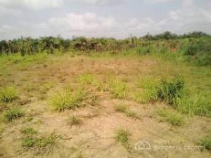 Joint   Venture Land Land for sale UNN Nsukka Enugu