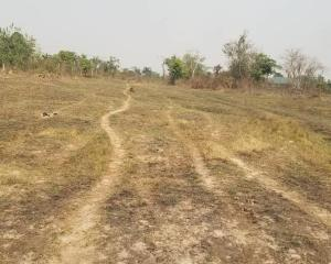 Mixed   Use Land Land for sale Comer junction, cross to ekundayo powerline Ifo Ifo Ogun