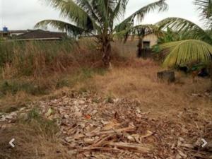 Residential Land Land for sale @ White House Bus Stop, Thomas Estate, Irawo, Owode After Mile 12,  Ketu Lagos