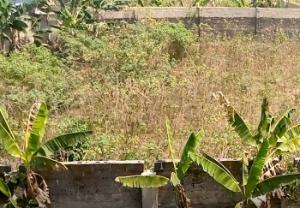 Mixed   Use Land Land for sale Behind Venus Hotel Uyo Akwa Ibom