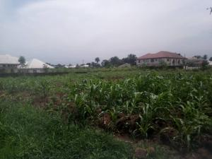 Residential Land Land for sale IDORO ROAD Uyo Akwa Ibom
