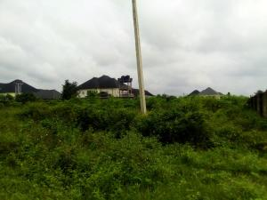 Mixed   Use Land Land for sale Shelter Afrique Estate Uyo Akwa Ibom