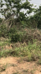 Residential Land Land for sale Omololu Olunloyo G.R.A Ring Rd Ibadan Oyo