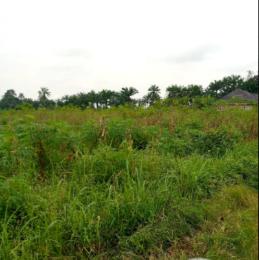 Residential Land Land for sale Awka between Nibo and Awka Awka North Anambra