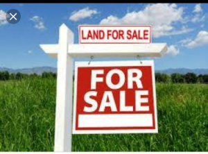 Land for sale Alexander Ave Old Ikoyi Ikoyi Lagos