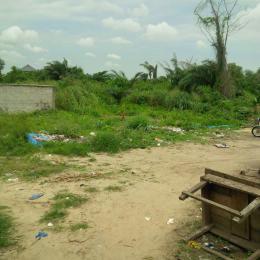 Land for sale Royal Palm Will Estate Badore Ajah Lagos