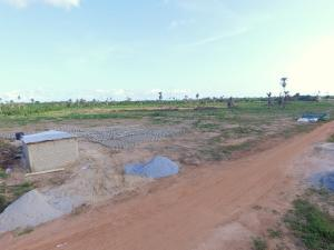 Mixed   Use Land Land for sale Genuine Land Buy And Build With Instant Allocation Ideato Town Ideato North Imo