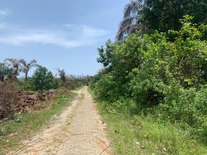 Land for sale LEKKI Scheme 2 Ogombo Ajah Lagos