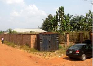 Land for sale Ankpa road, Ayingba; Ankpa Kogi