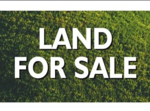 Residential Land Land for sale igeshu alapoti  atan road, Ado Odo/Ota Ogun