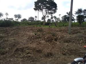 Mixed   Use Land Land for sale Along Airport road Uruan Akwa Ibom