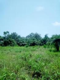 Land for sale Peace Estate Anthony Village Maryland Lagos