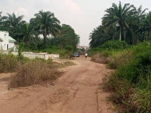 Land for sale 300 plots of land for sale in mgbirichi pH road Ohaji/Egbema Imo