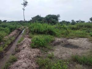 Mixed   Use Land Land for sale Renaissance Reloaded, Phase 3 Free Trade Zone Ibeju-Lekki Lagos