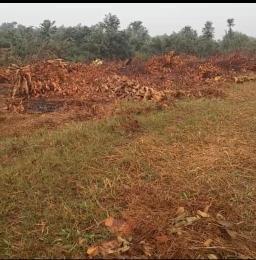 Mixed   Use Land Land for sale D Aradagun Badagry Lagos