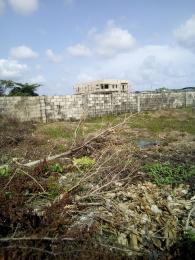 Land for sale Monastery Road Sangotedo Sangotedo Ajah Lagos