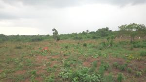 1 bedroom mini flat  Residential Land Land for sale Agric Rd Agric Ikorodu Lagos
