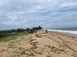 Serviced Residential Land Land for sale Iiashe Private Beach Resort Estate Located On Snake Island Off The Lagos Coast Along Badagry Creek Beautiful Beaches Around Investors Delight Badagry Badagry Lagos