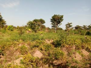 Residential Land Land for sale Off Terwase Agbadu Road, Mbaikya Mega Layout Makurdi Benue
