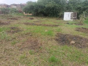 Mixed   Use Land Land for sale Back Of Omole Phase 2, Beside Berry Court Estate Olowora Ojodu Lagos