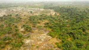 Mixed   Use Land Land for sale Queens Garden City Atan Ota Ota GRA Ado Odo/Ota Ogun