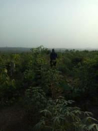 Land for sale Papa Ilaro Road. Papalanto Ewekoro Ogun