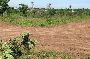 Serviced Residential Land Land for sale Epe, Ibeju Epe Road Epe Lagos