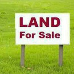Land for sale University View Estate opposite Lagos Business school at ajah Sangotedo Ajah Lagos
