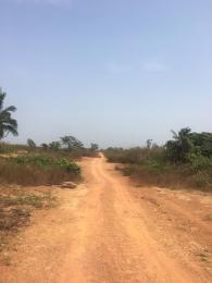 Serviced Residential Land Land for sale Orunfun village free trade zone Free Trade Zone Ibeju-Lekki Lagos