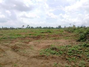 Residential Land for sale Western Hiltop Estate, Ikola Road Alagbado Abule Egba Lagos