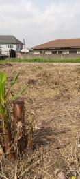 Residential Land for sale   Soluyi Gbagada Lagos