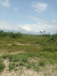 Serviced Residential Land Land for sale Flourishgate Gardens Abijo Abijo Ajah Lagos