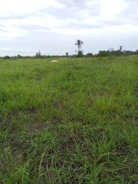 Mixed   Use Land Land for shortlet Land banking and speculation off monastery road  Sangotedo Ajah Lagos