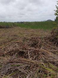 Mixed   Use Land for sale Inside An Estate Sangotedo Ajah Lagos