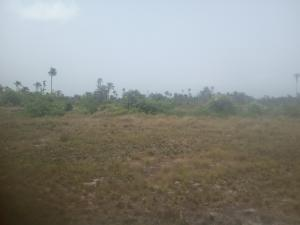 Serviced Residential Land Land for sale Near The Famous Catholic Shrine Aguleri Anambra Anambra