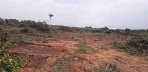 Serviced Residential Land Land for sale Canaan Land Estate EDO OGWASHI UKU Aniocha South Delta