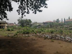 Land for sale Osapa london Lekki Lagos