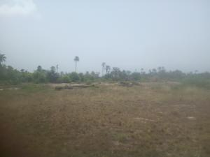 Mixed   Use Land Land for sale Behind Ebonyi State University Permanent Campus Izzamgbo Abakaliki Ebonyi