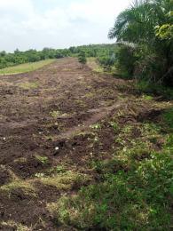 Residential Land Land for sale Silver Park estate Enugu, along international Airport road  Enugu Enugu