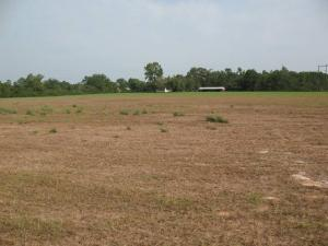 Serviced Residential Land Land for sale Ilarape Epe, Along Augustine University Road  Epe Road Epe Lagos