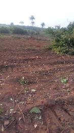 Mixed   Use Land Land for sale Indiakwu road eziora Ozubulu Anambra state Ekwusigo Anambra