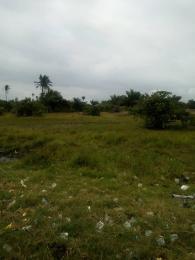 Residential Land Land for sale Janson Court Estate Gbarada Via Abule Panu before Eleko Junction 2min away from Lekki Epe Express Way Lakowe Ajah Lagos