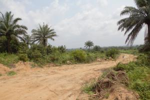 Residential Land Land for sale Along idundu/calabar road, opposite Mainland College of technology Calabar Cross River