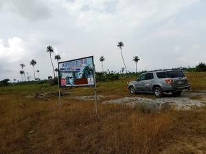 Serviced Residential Land Land for sale Otolu Town By Lekki Free Trade Zone Road Ibeju Lekki Lagos Free Trade Zone Ibeju-Lekki Lagos