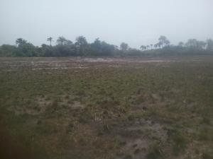 Serviced Residential Land Land for rent Eleranigbe Off Lekki Epe Expressway With Proximity To The Proposed Airport  Eleranigbe Ibeju-Lekki Lagos
