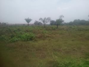 Serviced Residential Land Land for sale Eluju Ibeju Lekki Opposite Amen Estate Phase 2 Eluju Ibeju-Lekki Lagos