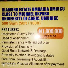 Serviced Residential Land Land for sale Close to Michael Okpara University of Agriculture Umudike  Aba Abia