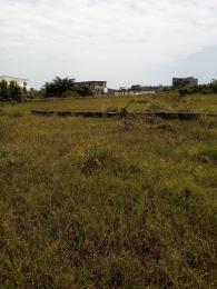 Mixed   Use Land Land for sale Blue edge garden lekki free trade zones ibeju lekki 5 minute drive from LA campacne tropical beach resorts  Free Trade Zone Ibeju-Lekki Lagos